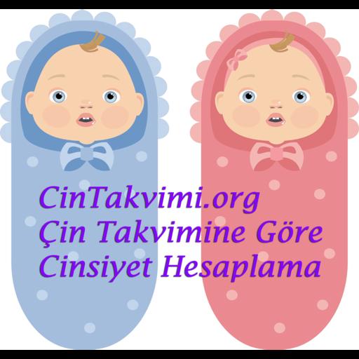 çin Takvimine Göre Otomatik Bebek Cinsiyeti Hesaplama Yaş Hesaplama